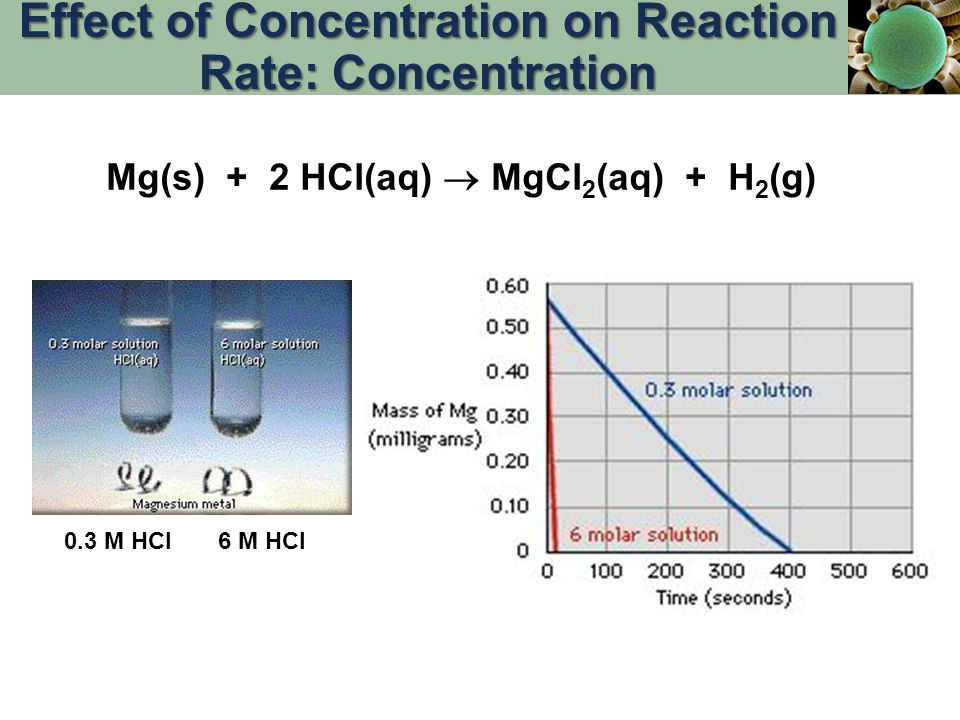 0.3 M HCl6 M HCl Mg(s) + 2 HCl(aq)  MgCl 2 (aq) + H 2 (g) Effect of Concentration on Reaction Rate: Concentration