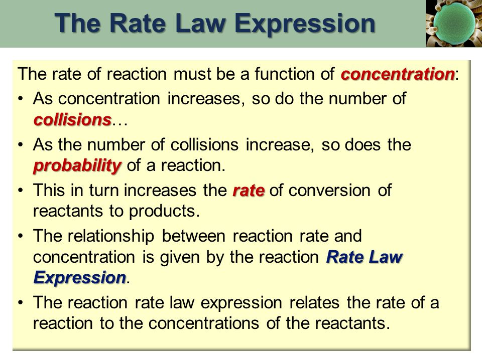 concentration The rate of reaction must be a function of concentration: collisionsAs concentration increases, so do the number of collisions… probabil