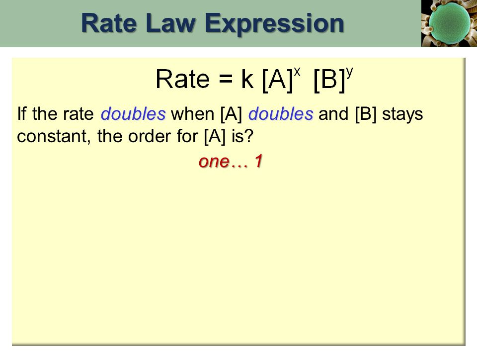 doublesdoubles If the rate doubles when [A] doubles and [B] stays constant, the order for [A] is? one… 1 Rate Law Expression