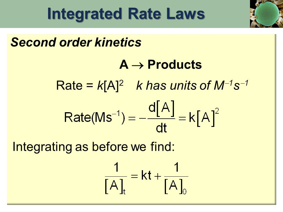 Rate = k[A] 2 Integrating as before we find: A  Products k has units of M  1 s  1 Second order kinetics Integrated Rate Laws