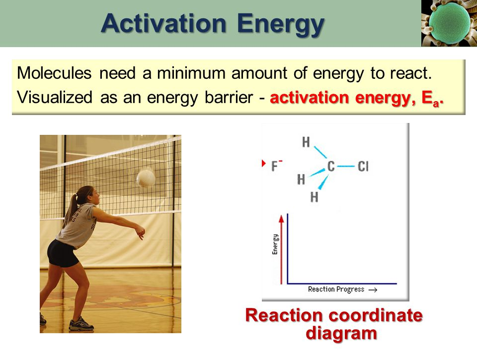 Molecules need a minimum amount of energy to react. activation energy, E a. Visualized as an energy barrier - activation energy, E a. Reaction coordin