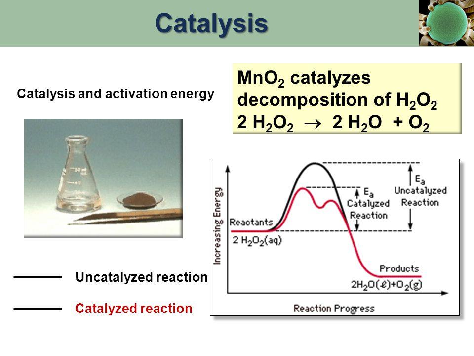 Catalysis and activation energy Uncatalyzed reaction Catalyzed reaction MnO 2 catalyzes decomposition of H 2 O 2 2 H 2 O 2  2 H 2 O + O 2 Catalysis