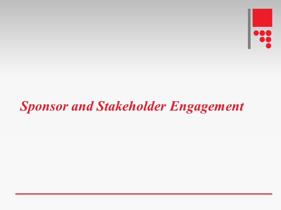 Sponsor and Stakeholder Engagement