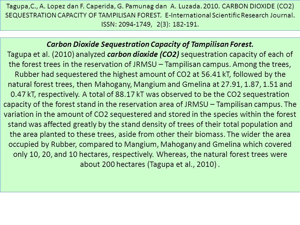 Carbon Dioxide Sequestration Capacity of Tampilisan Forest.