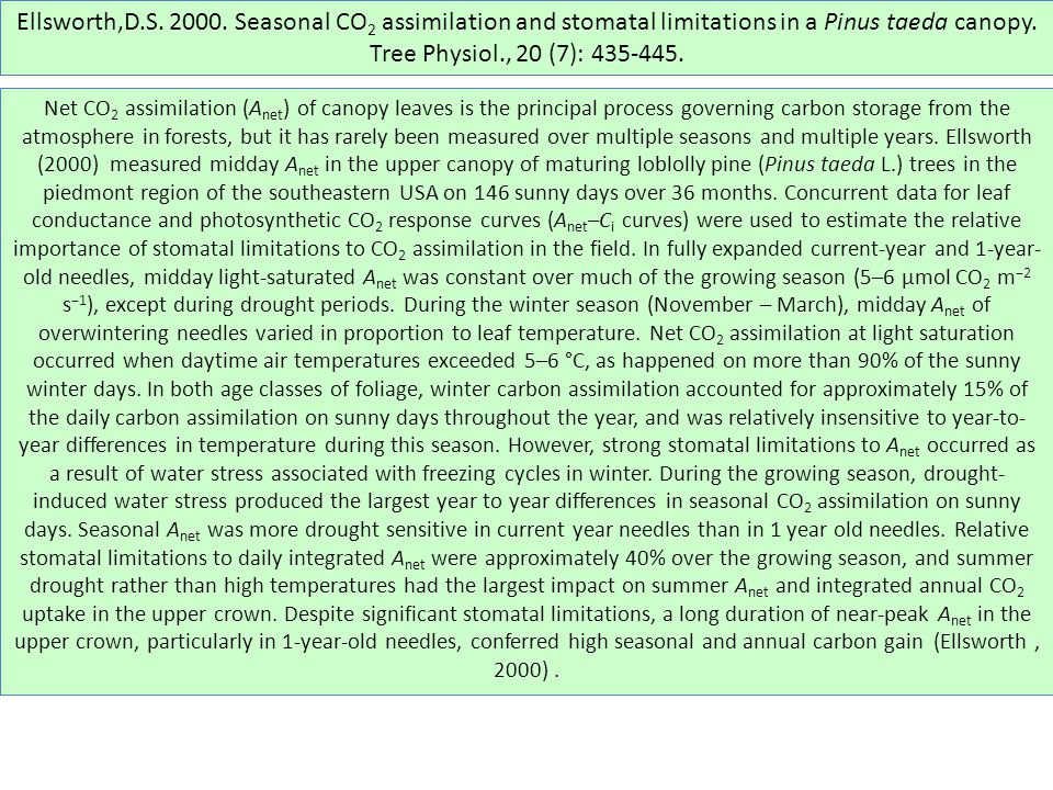 Ellsworth,D.S. 2000. Seasonal CO 2 assimilation and stomatal limitations in a Pinus taeda canopy.