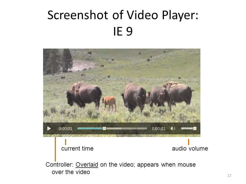 Screenshot of Video Player: IE 9 17 Controller: Overlaid on the video; appears when mouse over the video audio volumecurrent time