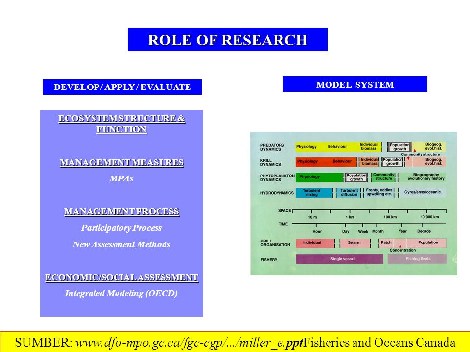 ROLE OF RESEARCH ECOSYSTEM STRUCTURE & FUNCTION MANAGEMENT MEASURES MPAs MANAGEMENT PROCESS Participatory Process New Assessment Methods ECONOMIC/SOCIAL ASSESSMENT Integrated Modeling (OECD) MODEL SYSTEM DEVELOP / APPLY / EVALUATE SUMBER: www.dfo-mpo.gc.ca/fgc-cgp/.../miller_e.ppt‎Fisheries and Oceans Canada
