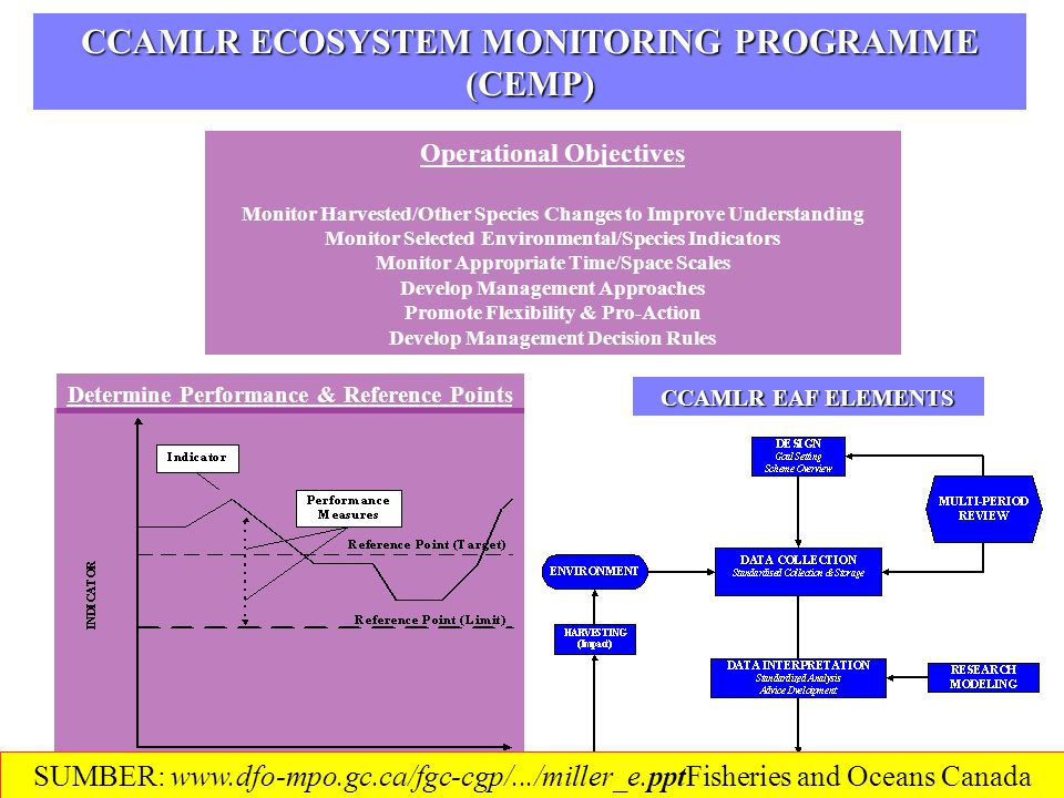 ROLE OF RESEARCH ECOSYSTEM STRUCTURE & FUNCTION MANAGEMENT MEASURES MPAs MANAGEMENT PROCESS Participatory Process New Assessment Methods ECONOMIC/SOCIAL ASSESSMENT Integrated Modeling (OECD) MODEL SYSTEM DEVELOP / APPLY / EVALUATE SUMBER: www.dfo-mpo.gc.ca/fgc-cgp/.../miller_e.pptFisheries and Oceans Canada