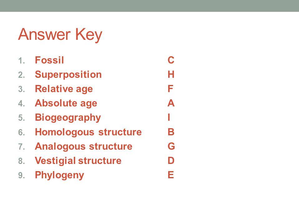 Answer Key 1. FossilC 2. SuperpositionH 3. Relative ageF 4. Absolute ageA 5. BiogeographyI 6. Homologous structureB 7. Analogous structureG 8. Vestigi