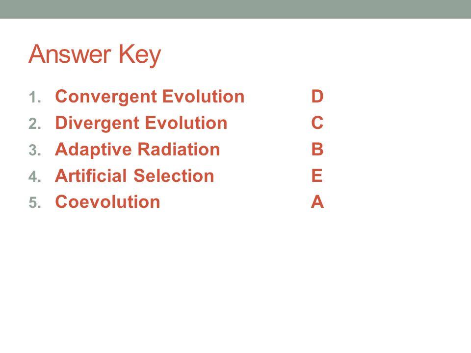 Answer Key 1. Convergent EvolutionD 2. Divergent EvolutionC 3. Adaptive RadiationB 4. Artificial SelectionE 5. CoevolutionA