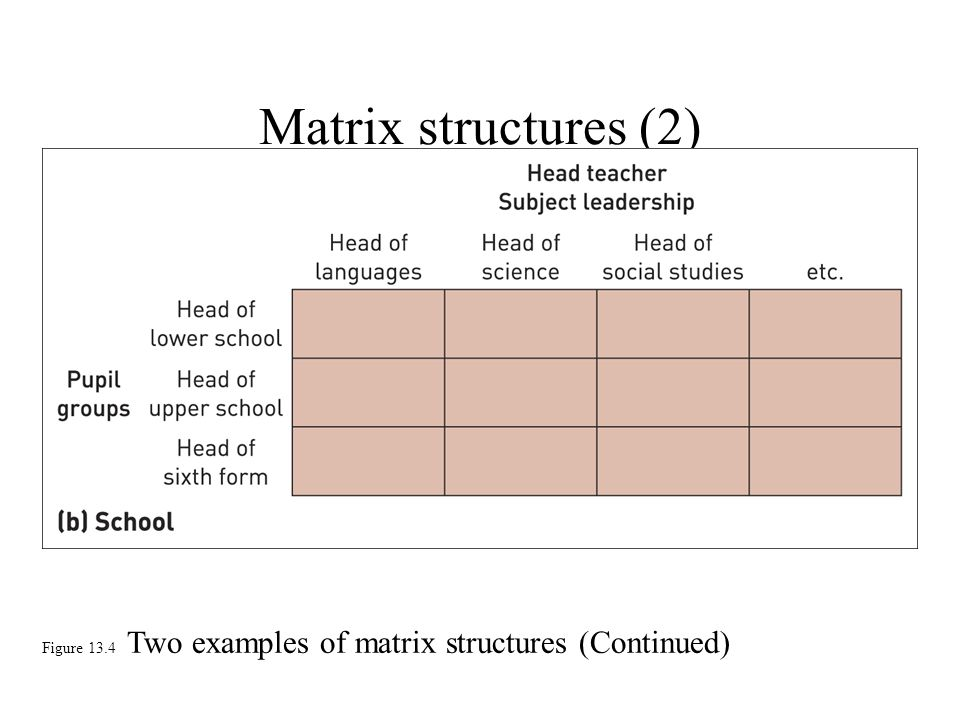 Matrix structures (2) Figure 13.4 Two examples of matrix structures (Continued)