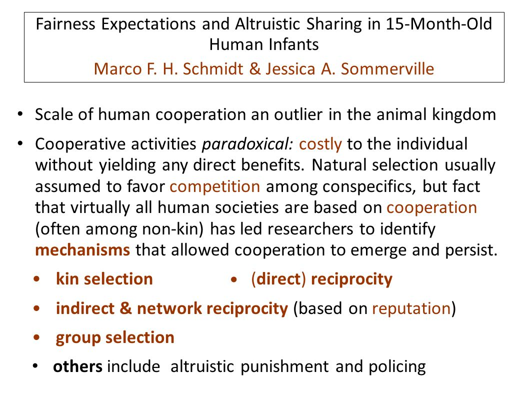 Scale of human cooperation an outlier in the animal kingdom Cooperative activities paradoxical: costly to the individual without yielding any direct b