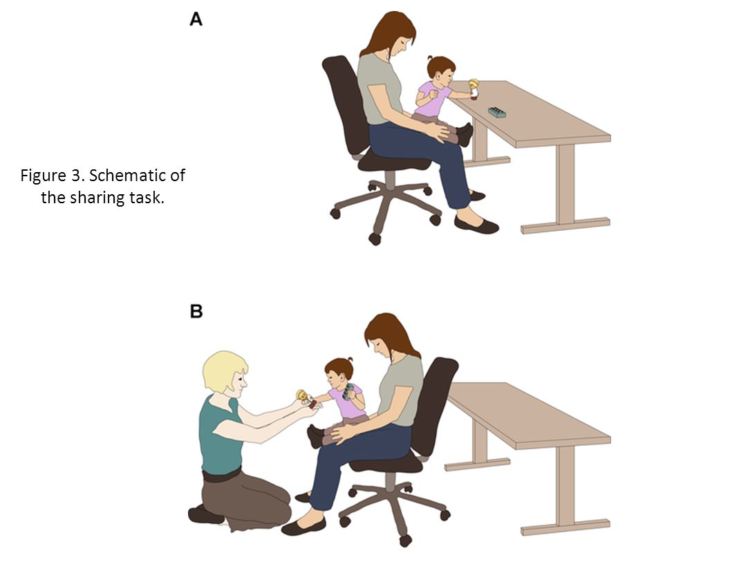 Figure 3. Schematic of the sharing task.