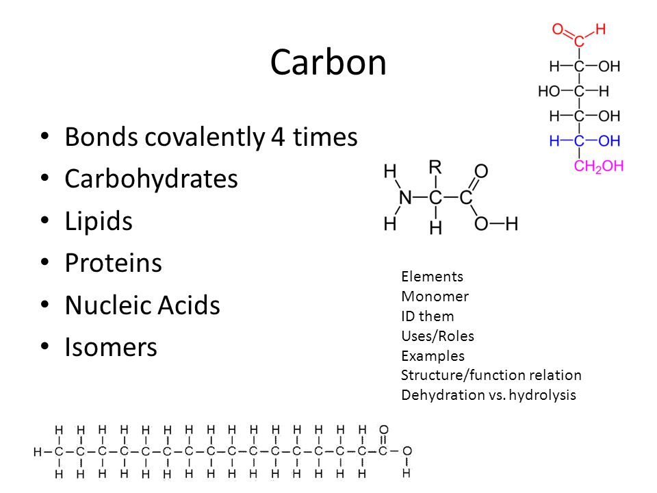 Carbon Bonds covalently 4 times Carbohydrates Lipids Proteins Nucleic Acids Isomers Elements Monomer ID them Uses/Roles Examples Structure/function re
