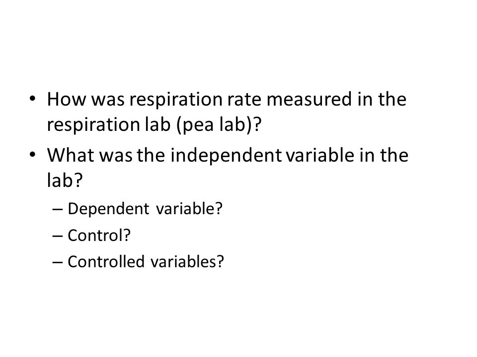 How was respiration rate measured in the respiration lab (pea lab)? What was the independent variable in the lab? – Dependent variable? – Control? – C