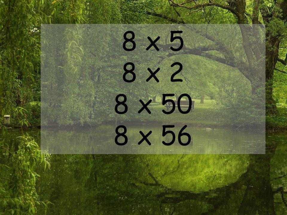 8 x 5 8 x 2 8 x 50 8 x 56