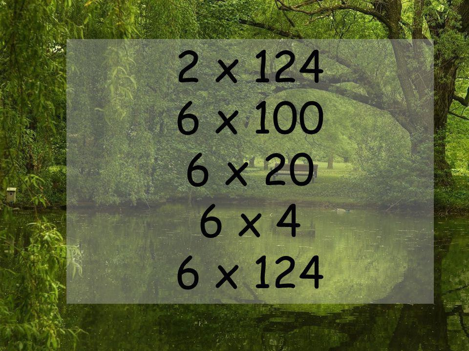 2 x 124 6 x 100 6 x 20 6 x 4 6 x 124