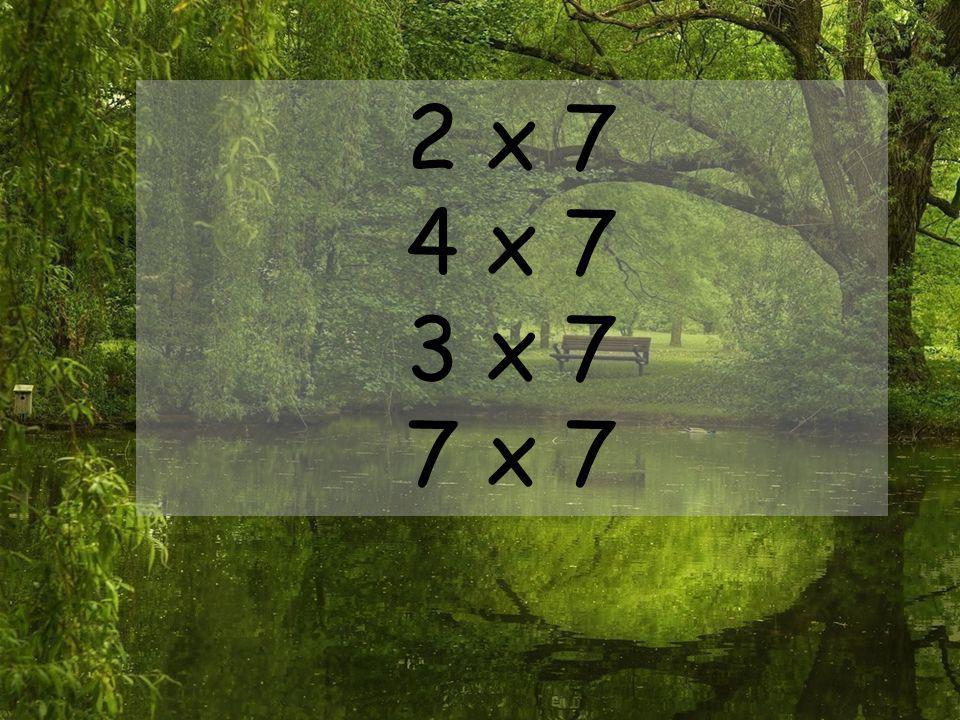2 x 7 4 x 7 3 x 7 7 x 7