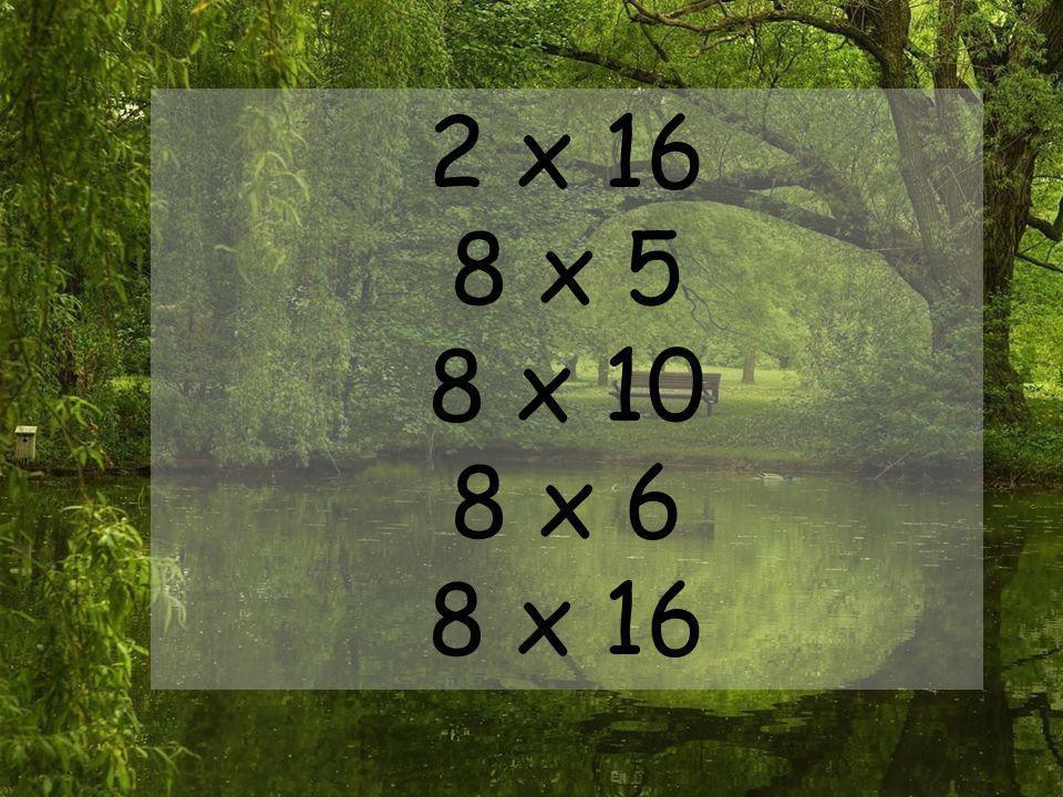 2 x 16 8 x 5 8 x 10 8 x 6 8 x 16