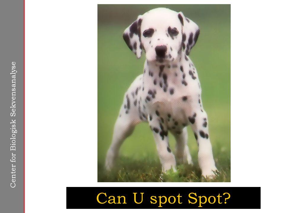 Center for Biologisk Sekvensanalyse Can U spot Spot