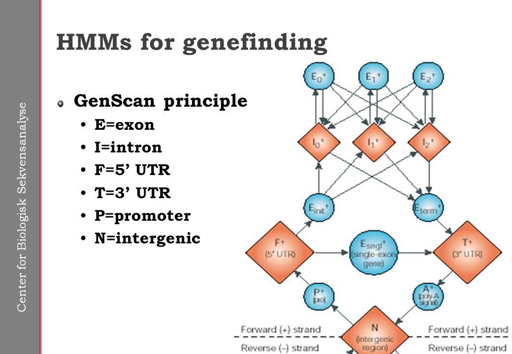 Center for Biologisk Sekvensanalyse HMMs for genefinding GenScan principle E=exon I=intron F=5' UTR T=3' UTR P=promoter N=intergenic