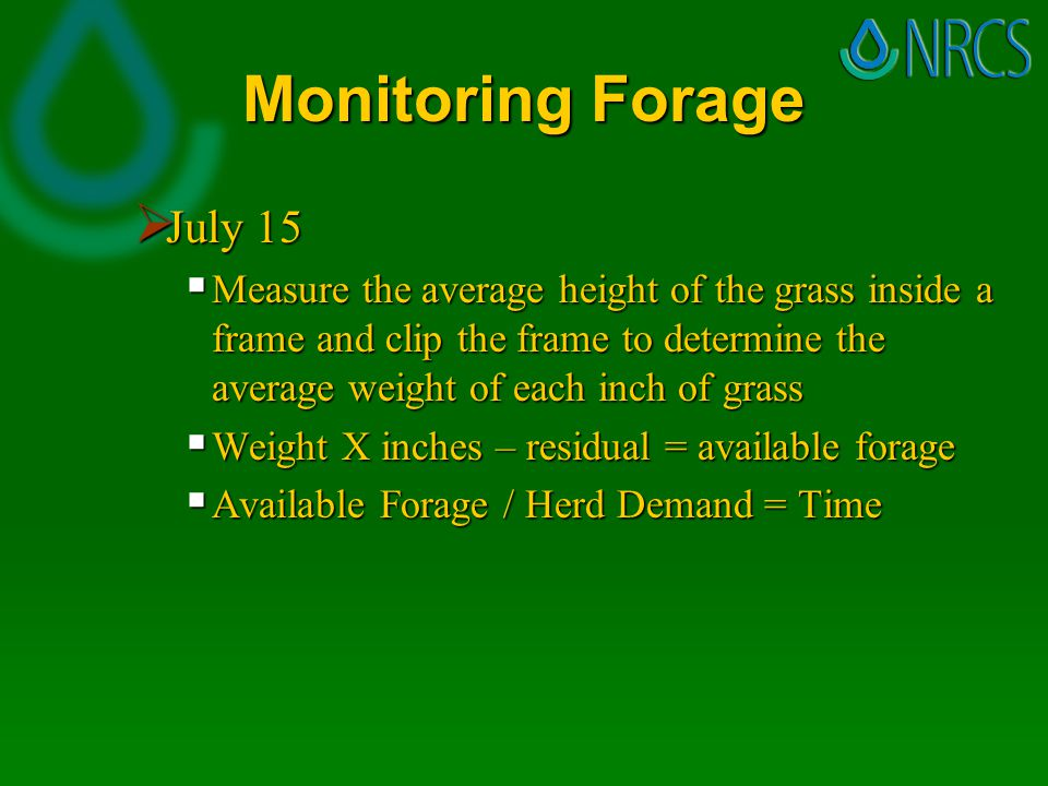 Monitoring Forage  July 15  Measure the average height of the grass inside a frame and clip the frame to determine the average weight of each inch of grass  Weight X inches – residual = available forage  Available Forage / Herd Demand = Time