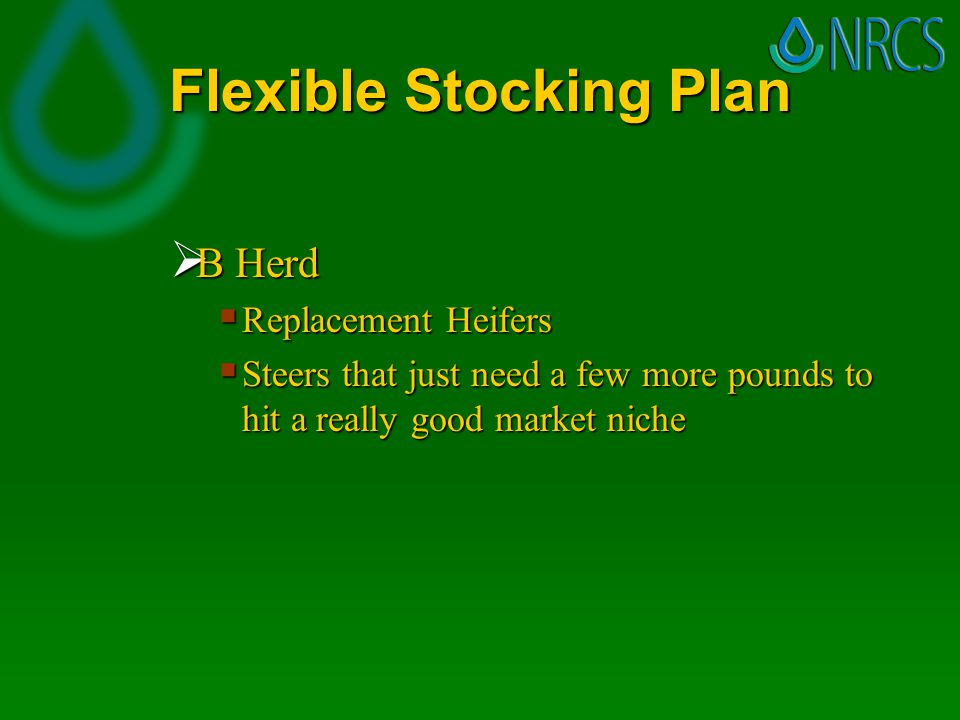 Flexible Stocking Plan  C Herd  The remaining animals that could be sold tomorrow if forage gets short  Early weaned calves  Yearling steers  Older cows  Cows with poor genetics