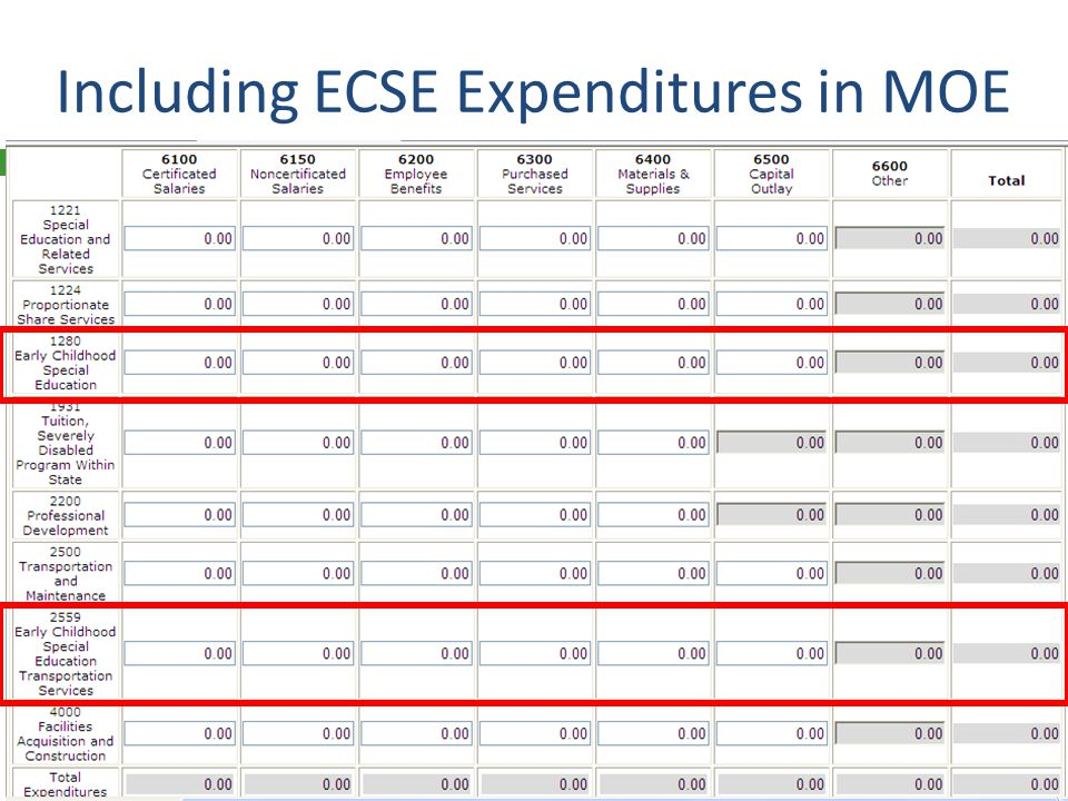 Including ECSE Expenditures in MOE