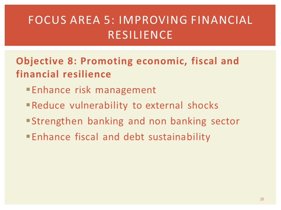 Objective 8: Promoting economic, fiscal and financial resilience  Enhance risk management  Reduce vulnerability to external shocks  Strengthen banking and non banking sector  Enhance fiscal and debt sustainability 20 FOCUS AREA 5: IMPROVING FINANCIAL RESILIENCE