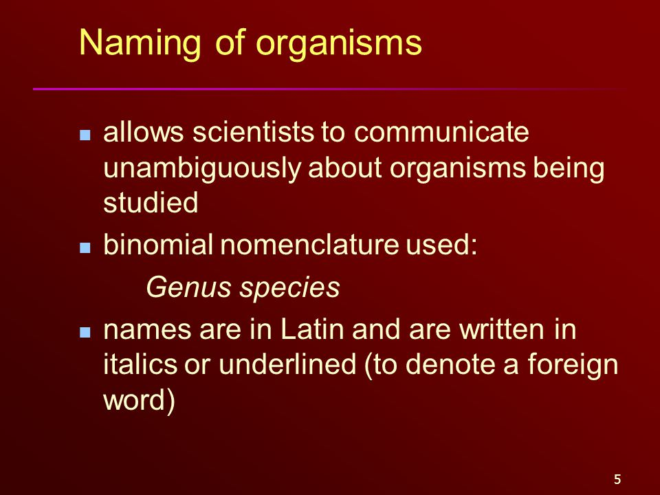 5 Naming of organisms allows scientists to communicate unambiguously about organisms being studied binomial nomenclature used: Genus species names are