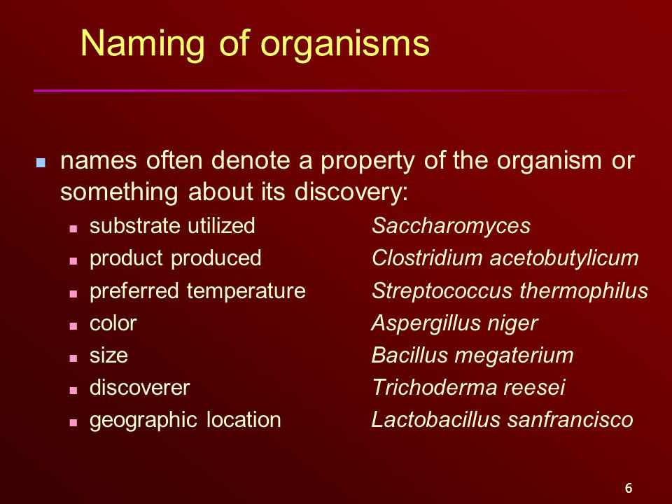 6 Naming of organisms names often denote a property of the organism or something about its discovery: substrate utilizedSaccharomyces product produced