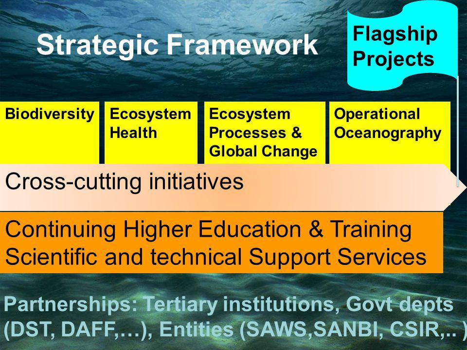 Continuing Higher Education & Training Scientific and technical Support Services BiodiversityEcosystem Health Ecosystem Processes & Global Change Operational Oceanography Cross-cutting initiatives Flagship Projects Strategic Framework Partnerships: Tertiary institutions, Govt depts (DST, DAFF,…), Entities (SAWS,SANBI, CSIR,..