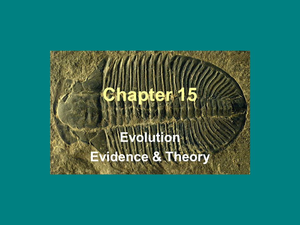 Chapter 15 Evolution Evidence & Theory