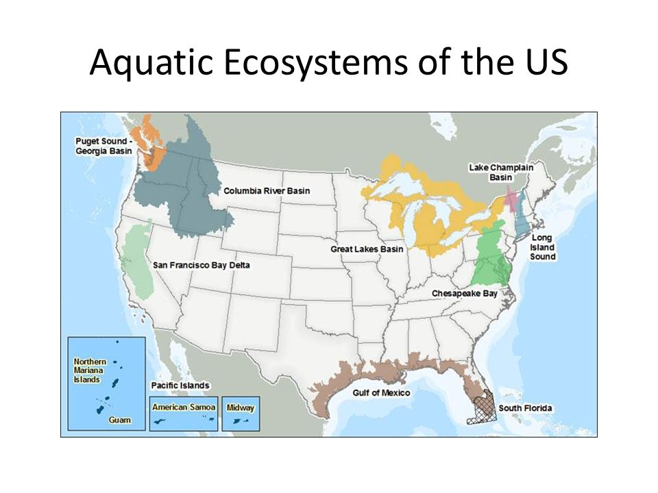 Aquatic Ecosystems of the US
