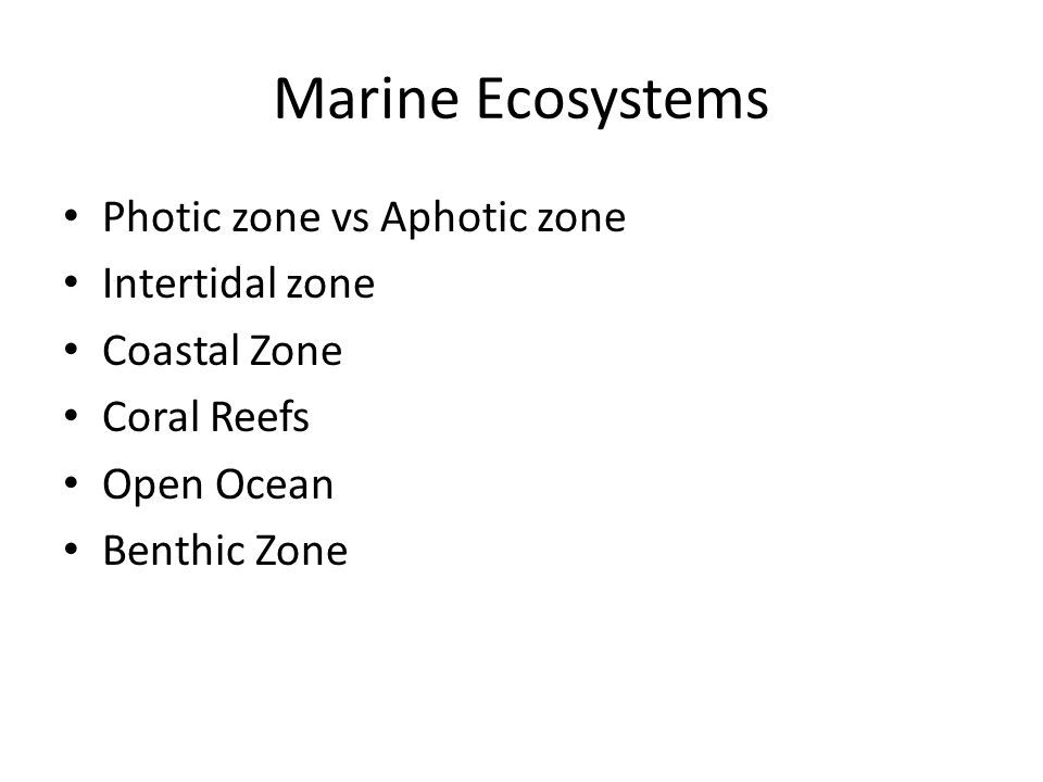 Marine Ecosystems Photic zone vs Aphotic zone Intertidal zone Coastal Zone Coral Reefs Open Ocean Benthic Zone