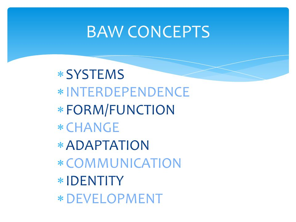 BAW CONCEPTS  SYSTEMS  INTERDEPENDENCE  FORM/FUNCTION  CHANGE  ADAPTATION  COMMUNICATION  IDENTITY  DEVELOPMENT