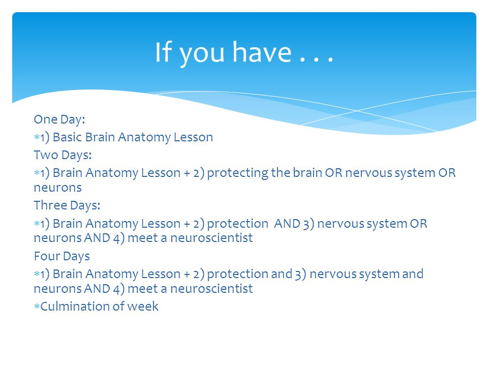 One Day:  1) Basic Brain Anatomy Lesson Two Days:  1) Brain Anatomy Lesson + 2) protecting the brain OR nervous system OR neurons Three Days:  1) Brain Anatomy Lesson + 2) protection AND 3) nervous system OR neurons AND 4) meet a neuroscientist Four Days  1) Brain Anatomy Lesson + 2) protection and 3) nervous system and neurons AND 4) meet a neuroscientist  Culmination of week If you have...