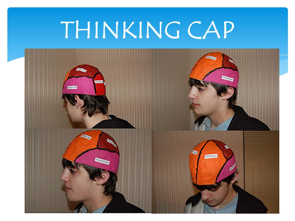 1. Create the Form: First, create the brain form for the cap.