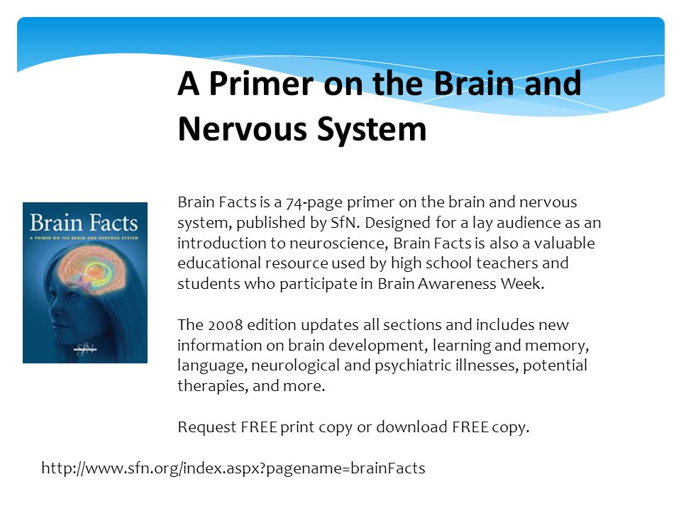 A Primer on the Brain and Nervous System Brain Facts is a 74-page primer on the brain and nervous system, published by SfN.