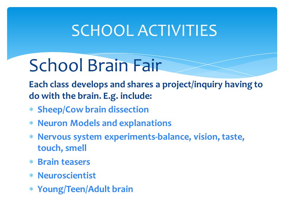School Brain Fair Each class develops and shares a project/inquiry having to do with the brain.