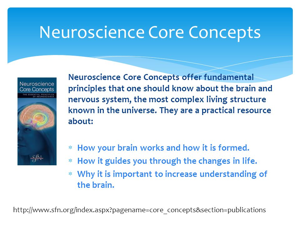 Neuroscience Core Concepts offer fundamental principles that one should know about the brain and nervous system, the most complex living structure known in the universe.