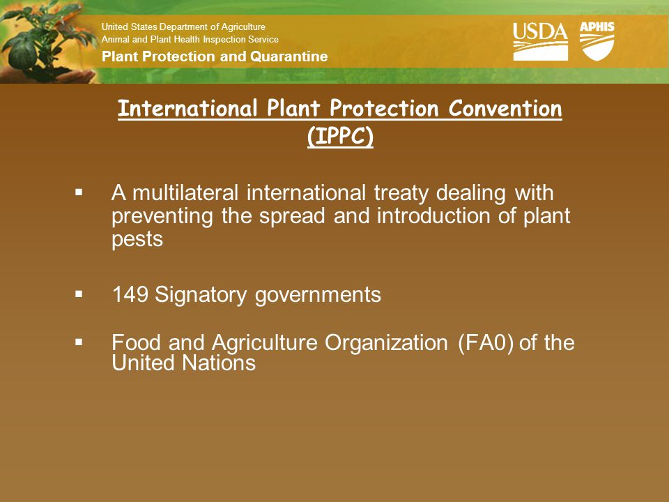 United States Department of Agriculture Animal and Plant Health Inspection Service Plant Protection and Quarantine Purpose: International Standards Each member country still has to draft and implement their own regulation.
