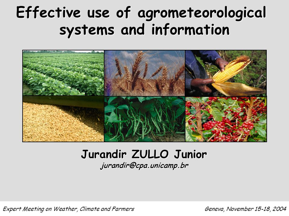 Jurandir ZULLO Junior jurandir@cpa.unicamp.br Effective use of agrometeorological systems and information Expert Meeting on Weather, Climate and Farmers Geneva, November 15-18, 2004