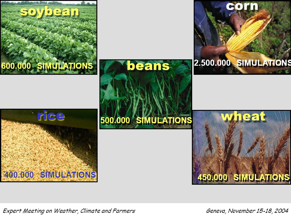 soybean 600.000 SIMULATIONS corn 2.500.000 SIMULATIONS beans 500.000 SIMULATIONS rice 400.000 SIMULATIONS wheat 450.000 SIMULATIONS
