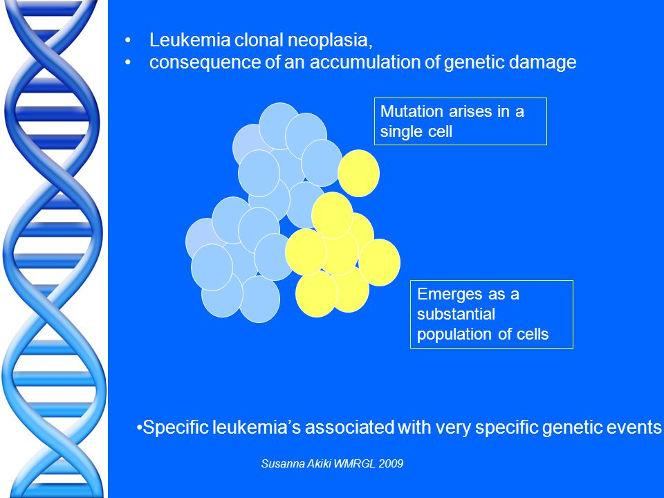 Susanna Akiki WMRGL 2009 Leukemia clonal neoplasia, consequence of an accumulation of genetic damage Specific leukemia's associated with very specific genetic events Mutation arises in a single cell Emerges as a substantial population of cells