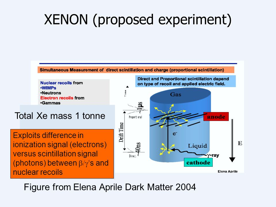 XENON (proposed experiment) Figure from Elena Aprile Dark Matter 2004 Total Xe mass 1 tonne Exploits difference in ionization signal (electrons) versu