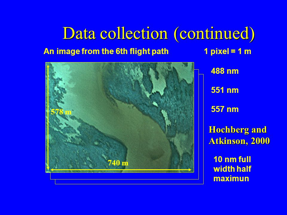 Data collection (continued) An image from the 6th flight path1 pixel = 1 m 578 m 740 m 488 nm 551 nm 557 nm 10 nm full width half maximun Hochberg and Atkinson, 2000
