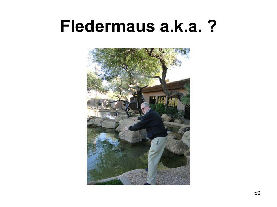 Fledermaus a.k.a. ? 50