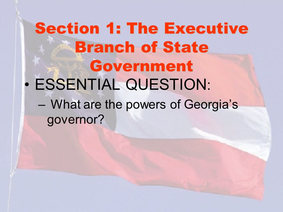 Section 1: The Executive Branch of State Government What words do I need to know.