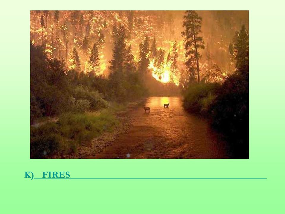 K)_________________________________________________FIRES